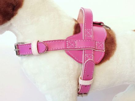 Fusion Pink Harness - Large